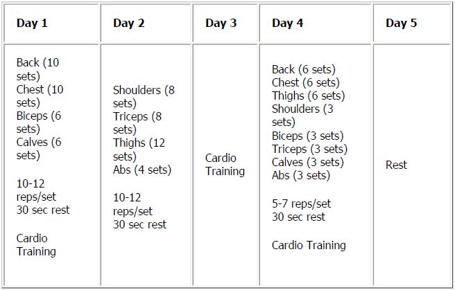 5 day workout schedule | Quick Fat Loss